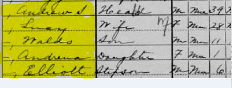 Collins_A_1900Census